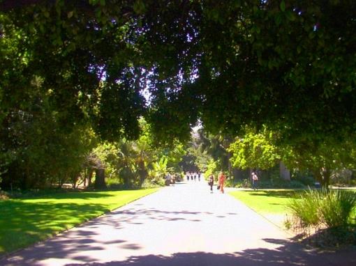 botanic-gardens-01
